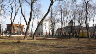 Решить судьбу одного из старейших парков Воронежа доверили студентам