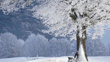 Синоптики рассказали, каким будет в Воронежской области последний месяц зимы