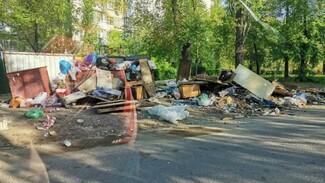 Жители Воронежа пожаловались на превратившую двор в «свинарник» мусорную площадку