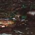 Миллион машин и сбросы в реки. Воронежцам назвали главные экологические проблемы региона