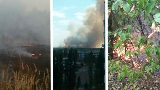 В Воронежской области за один день произошло несколько крупных ландшафтных пожаров