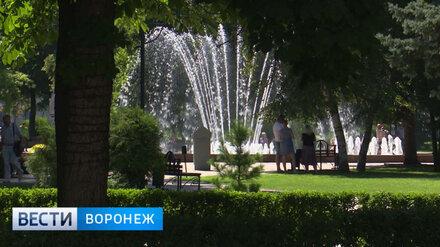 Сезон фонтанов в Воронеже завершится 14 октября