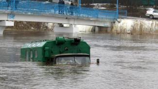 В Воронежской области затопило 25 населённых пунктов