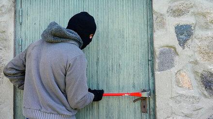 В Воронежской области грабитель в маске ворвался в дом к пенсионерам