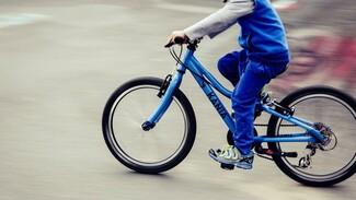 Воронежец угнал велосипед у 11-летнего мальчика