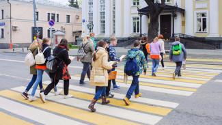 В Воронежской области проведут массовую проверку пешеходных переходов возле школ