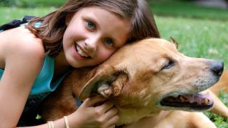 На чужих ошибках. Как избежать фатальных промахов в воспитании собаки