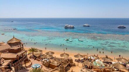 Из Воронежа могут открыть прямые рейсы в Египет