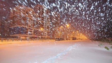 Жителей Воронежской области предупредили о метели и сильном снеге