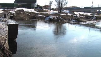 Во время паводка в Воронежской области под воду ушёл мост