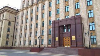 Охрану объектов культурного наследия Воронежской области доверили Владимиру Перцеву