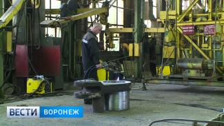 Депутат Госдумы о воронежском предприятии: их забрасывают высокими тарифами – это несправедливо