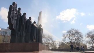 Спасение от пыли и граффити. Как в Воронеже купают памятники
