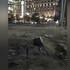 В центре Воронежа мужчина проткнул ногу арматурой из-за опасного ремонта улицы