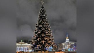 В Воронеже завершили установку главной новогодней ёлки от «тайного Санты»
