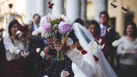 В «красивую» дату в Воронежской области случился свадебный бум