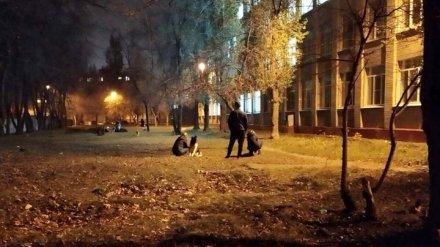 Воронежцы пожаловались на захвативших школьный двор наглых собачников