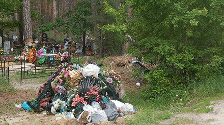 Хоронят прямо на дороге. Стихийное кладбище захватило часть Воронежского заповедника