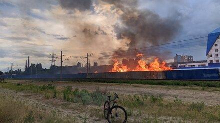 На левом берегу Воронежа пожарные четыре часа тушили мусор у железной дороги