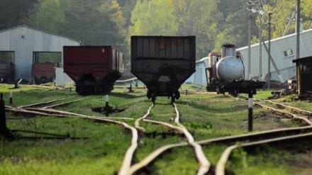 Попавшие под суд за семейный бизнес в Воронеже железнодорожные инспекторы отделались штрафами