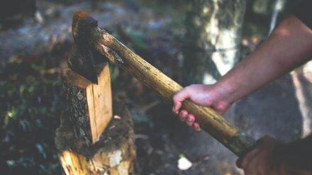 В Воронежской области мужчина убил знакомого топором и закопал тело
