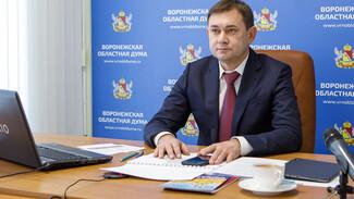 В Совфеде рассмотрели опыт Воронежской области по развитию села