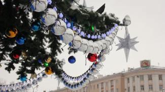 Мэрия сэкономит на главной новогодней ёлке Воронежа 600 тыс. рублей