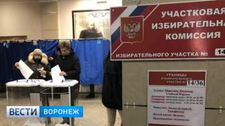 В Воронеже на избирательном участке камера зафиксировала передачу денег членам комиссии