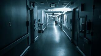 Число умерших от коронавируса жителей Воронежской области перевалило за 700