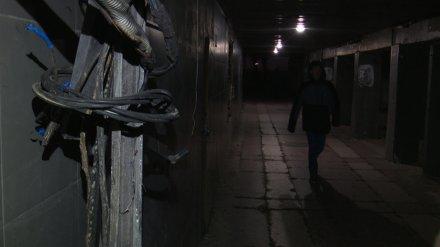 Власти Воронежа нашли инвестора для обновления подземного перехода у Политеха