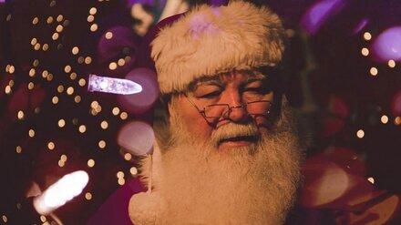 В Воронеже спрос на поздравление от Деда Мороза вопреки пандемии вырос в полтора раза