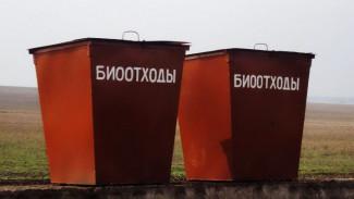 До конца года в Воронежской области достроят завод по переработке биоотходов животноводства