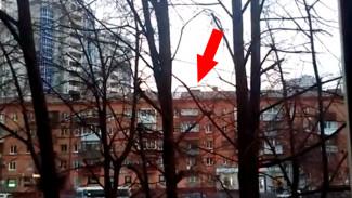 Воронежцы: открепившаяся часть кровли 5-этажки угрожает упасть на прохожих