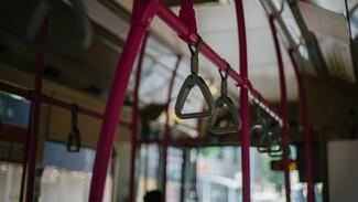 В Воронеже с 5 апреля изменятся два автобусных маршрута