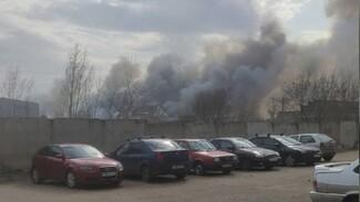 МЧС сообщило о двух ландшафтных пожарах на окраине Воронежа