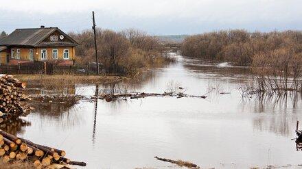 Синоптики дали прогноз на половодье в Воронежской области