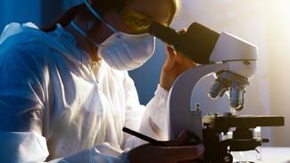 В Россию проник новый особо заразный штамм коронавируса