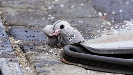 На трассе под Воронежем в крупном ДТП погибли два человека, ещё трое получили ранения