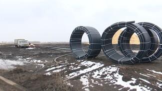 Власти подтвердили планы на строительство таможенного терминала под Воронежем в 2021 году