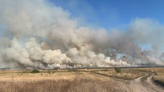 Крупный пожар случился вблизи посёлка под Воронежем