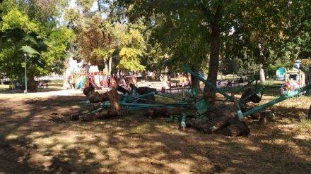 Воронежские воркаутеры забили тревогу из-за сноса площадки для тренировок у цирка