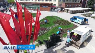 Цветочный калейдоскоп. Какими красками Воронеж распустится этой весной