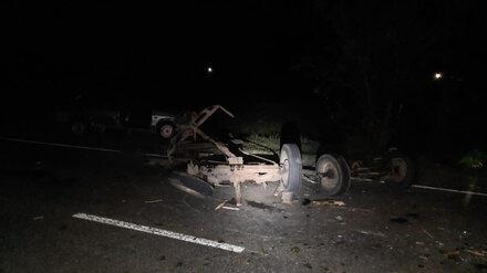 Мужчина пострадал при столкновении машины с лошадью под Воронежем