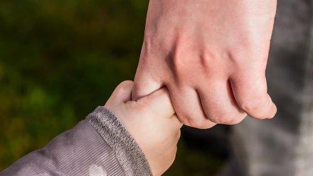 Воронежец разлучил маленькую дочь с бабушкой