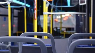 Единственный автобус с кондиционером появится в Воронеже в августе