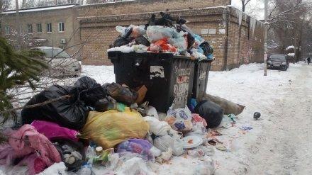 В Воронеже начала работу «горячая линия» для жалоб на неубранный мусор