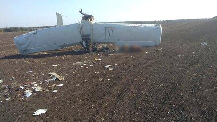 СМИ: при падении самолёта под Тулой погиб пилот из Воронежской области