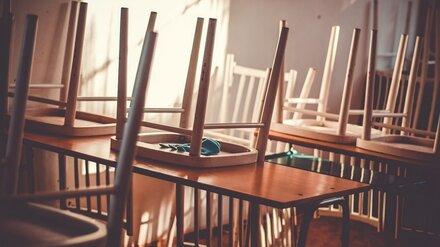 Воронежские школы начали готовиться к возможному переходу на дистанционку после каникул