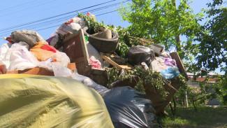 «Выбросить некуда!» Воронежцы из-за дефицита контейнеров оплачивают вывоз мусора за соседей