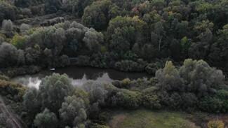 Охрану лесов усилили в Воронежской области из-за жары
